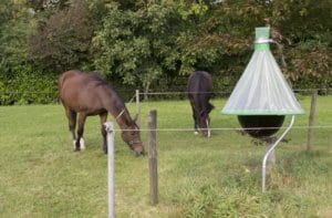 Pasture fencing protects horses and trap.