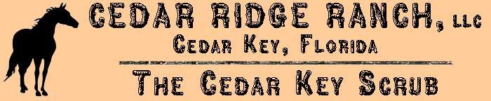 Cedar Ridge Ranch, Cedar Key, FL